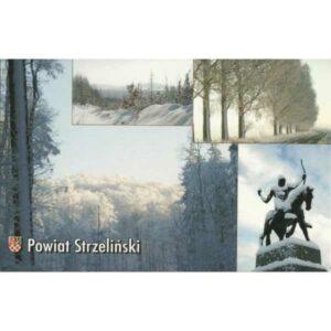 STRZELIN POWIAT HERB WIDOKÓWKA A417
