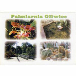 GLIWICE PALMIARNIA WIDOKÓWKA A14610