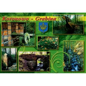 KORONOWO GRABINA HERB WIDOKÓWKA WR910