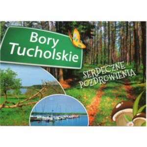 BORY TUCHOLSKIE WIDOKÓWKA WR6228
