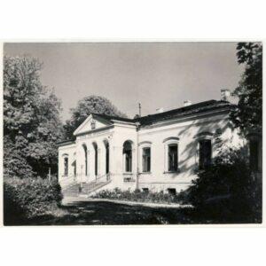 CZARNOLAS WIDOKÓWKA A19056