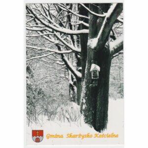 SKARŻYSKO KOŚCIELNE HERB WIDOKÓWKA A28985