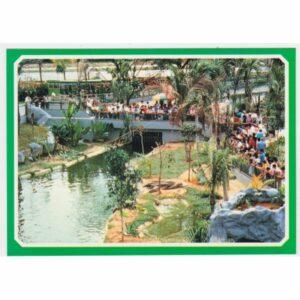 SINGAPUR JURONG CROCODILE PARADISE WIDOKÓWKA A29701