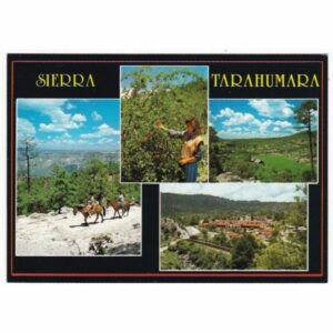 SIERRA TARAHUMARA WIDOKÓWKA A40548