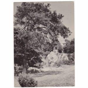 CZARNY KAMIEŃ WIDOKÓWKA A42673