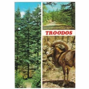 TROODOS MUFLON WIDOKÓWKA A54543