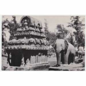 INDIE SŁOŃ MAHABALIPURAM WIDOKÓWKA A55119
