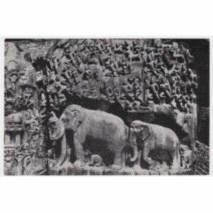 INDIE SŁOŃ MAHABALIPURAM WIDOKÓWKA A55380