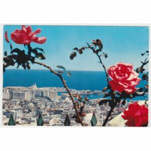 ALGIERIA ALGER WIDOKÓWKA A60916
