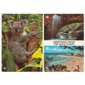 AUSTRALIA KOALA POCZTÓWKA A61627