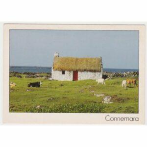 IRLANDIA CONNEMARA WIDOKÓWKA A61845