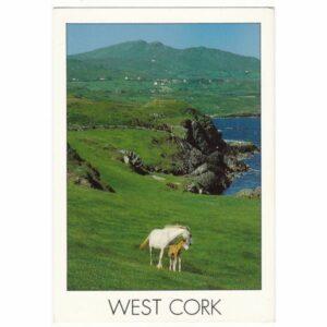IRLANDIA WEST CORK KONIE WIDOKÓWKA A64342