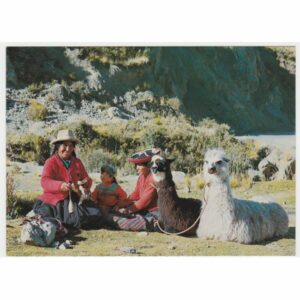 PERU LAMY WIDOKÓWKA A57407