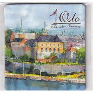 MAGNES NA LODÓWKĘ Oslo Norwegia 2374