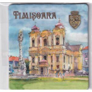 MAGNES NA LODÓWKĘ Timisoara Rumunia 2391