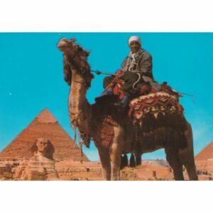 EGIPT GIZA WIELBŁĄD SFINKS PIRAMIDA CHEFRENA WIDOKÓWKA A72475