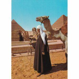 EGIPT GIZA WIELBŁĄD SFINKS PIRAMIDY CHEOPSA I CHEFRENA WIDOKÓWKA A72477