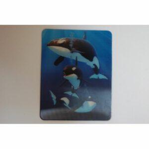 MAGNES 3D TRÓJWYMIAROWY ORKA ORKI 3108