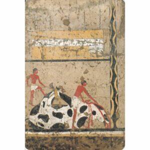 EGIPT MALOWIDŁA WIDOKÓWKA A75136