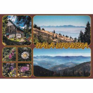 HALA LIPOWSKA WIDOKÓWKA WR10428