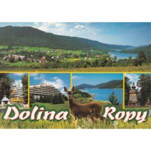 DOLINA ROPY WIDOKÓWKA WR10535