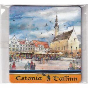 MAGNES NA LODÓWKĘ TALLINN ESTONIA 3565