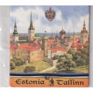 MAGNES NA LODÓWKĘ TALLINN ESTONIA 3567