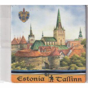MAGNES NA LODÓWKĘ TALLINN ESTONIA 3568